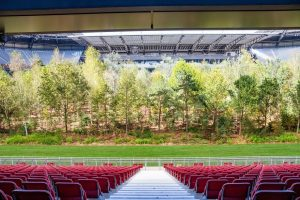 Kunstinstallation For Forest im Wörthersee Stadion